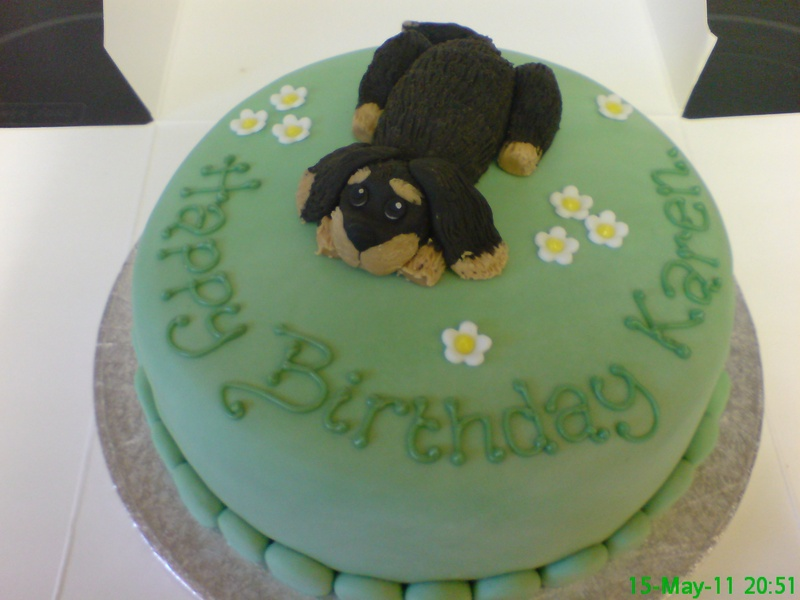 king charles spaniel cake - Beckys Scilly Cakes